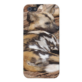African Wild Dog i Covers For iPhone 5