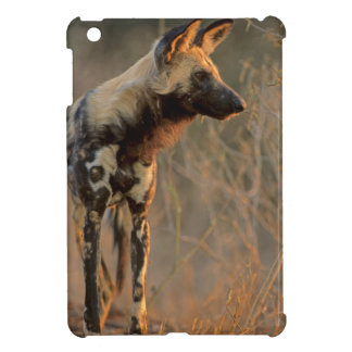 African Wild Dog (Lycaon Pictus), Kruger Case For The iPad Mini