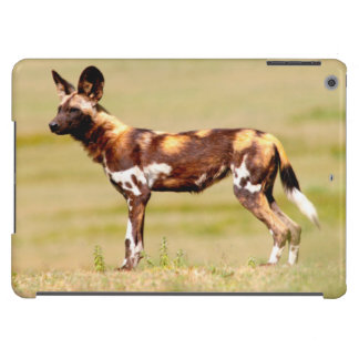 African Wild Dog (Lycaon Pictus) Standing iPad Air Cases