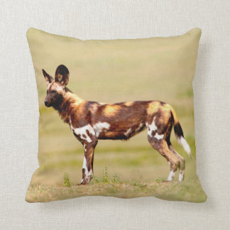 African Wild Dog (Lycaon Pictus) Standing Throw Pillow