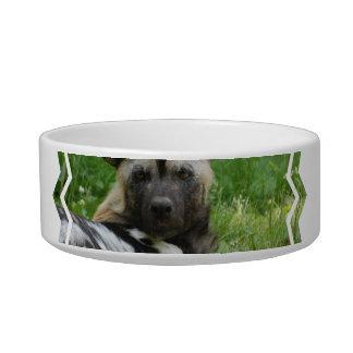 African Wild Dog Pet Bowl
