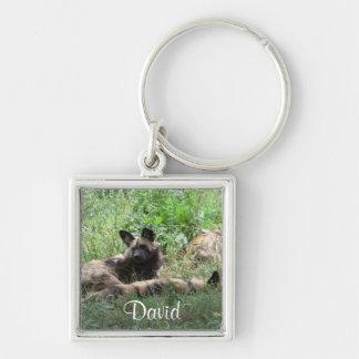 African WIld Dogs Keychain