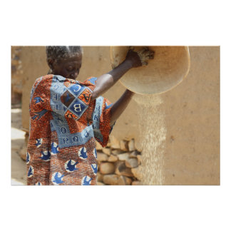 African Woman & Grain Harvest in Mali, West Africa Poster
