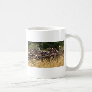 African Zebra cool stuff Classic White Coffee Mug