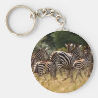 African Zebra cool stuff Keychain