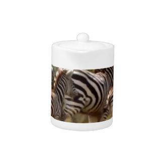 African Zebra cool stuff Teapot