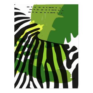 African Zebra Postcard