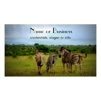 African Zebras in a Natural Setting Double-Sided Standard Business Cards (Pack Of 100)