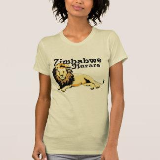 Africankoko Harare. Zimbabwe Playera