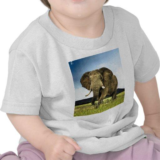 africano-elefante camiseta