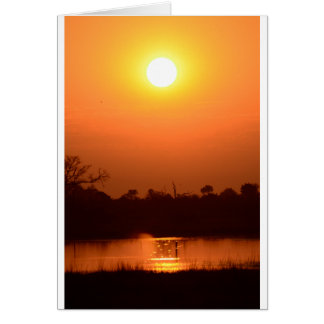 AfricanSunsetBotswana.png Card