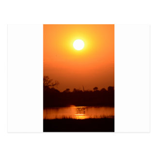 AfricanSunsetBotswana.png Postcard
