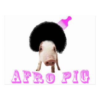 Afro Pig Postcard