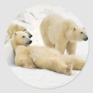 After Dinner Bear Classic Round Sticker