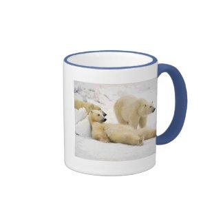 After Dinner Bear Ringer Coffee Mug
