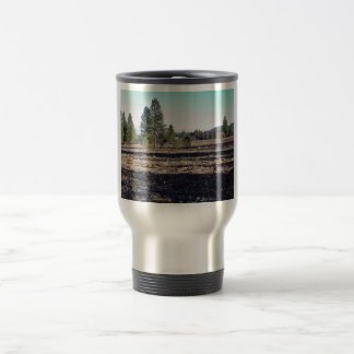 After fuels reduction 15 oz stainless steel travel mug