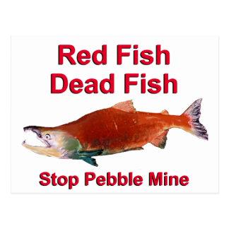 After Salmon - Stop Pebble Mine Postcards