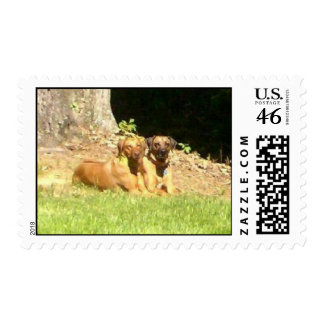 After the bath postage stamp