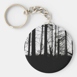 After the Fire Keychain