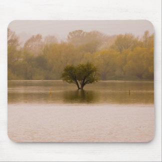 After the Flood Mouse Pad