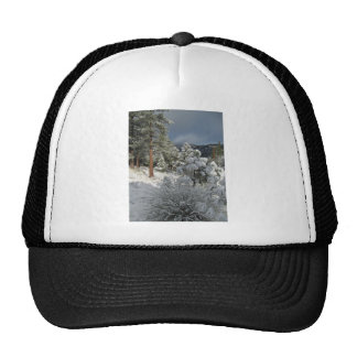 After the Mountain Snow Storm Trucker Hats