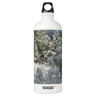 After the Mountain Snow Storm Water Bottle