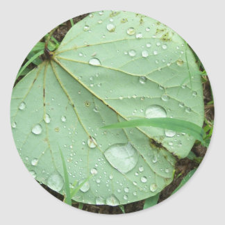 After the rain classic round sticker