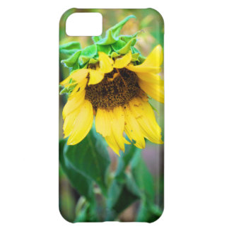 After the Rain Cover For iPhone 5C