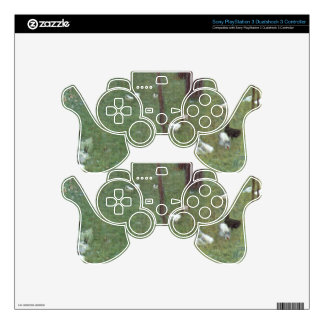 After the Rain (Garden with Chickens in St. Agatha PS3 Controller Skin