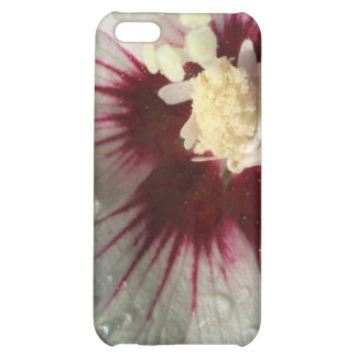 After the Rain iPhone 5C Covers