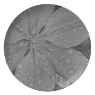 after the rain melamine plate