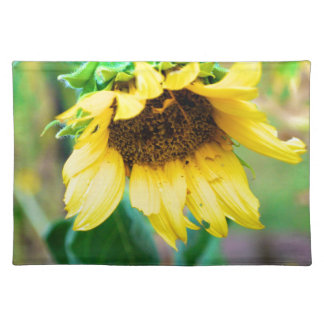 After the Rain Placemats