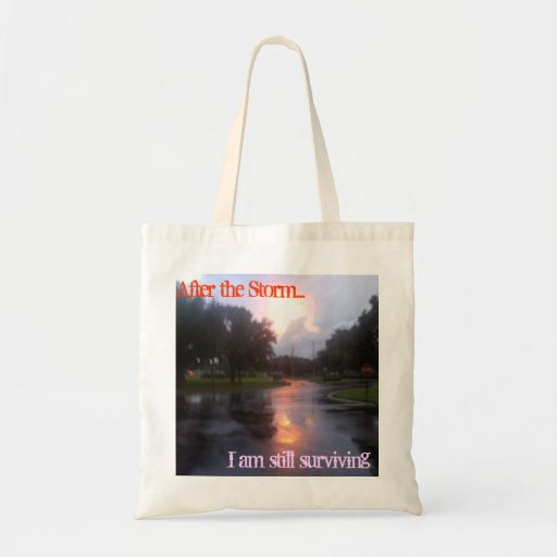 After the Storm Budget Tote Bag