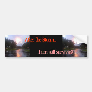 After the Storm Bumper Stickers