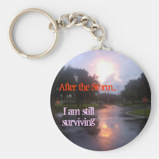 After the Storm Basic Round Button Keychain