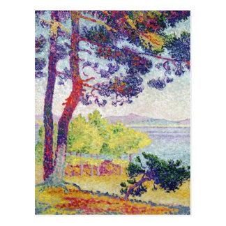Afternoon at Pardigon Var 1907 Post Card