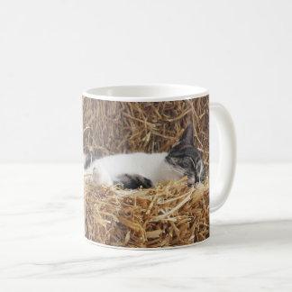 Afternoon Cat Nap Coffee Mug