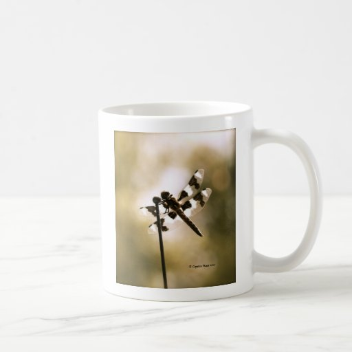 Afternoon Delight Coffee Mugs