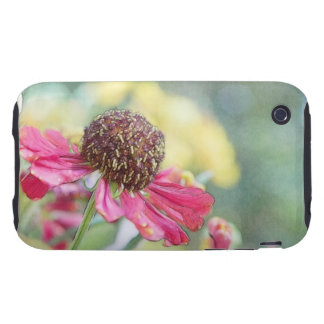 Afternoon Flower Garden – Heleniums iPhone 3 Tough Cases