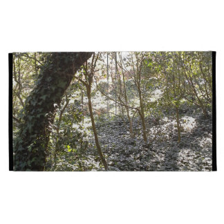 Afternoon Forest iPad Folio Case