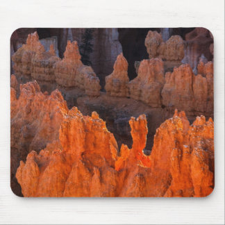 Afternoon Glow Mouse Pad