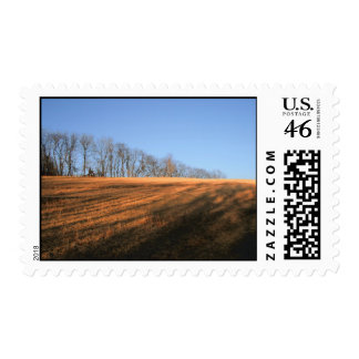 Afternoon Glow Postage Stamps