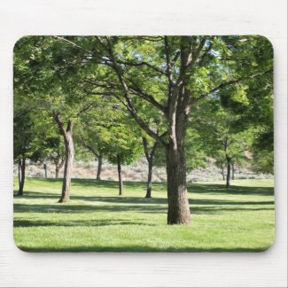 Afternoon in the Park mousepad