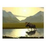 Afternoon Moose Postcard