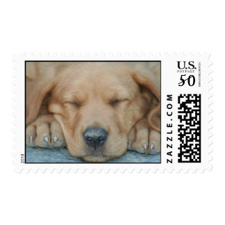 Afternoon nap postage