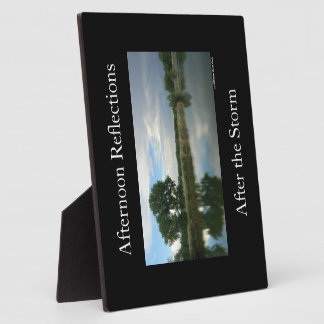 Afternoon Reflections Display Plaques