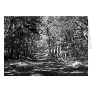 Afternoon Stroll - Note Card