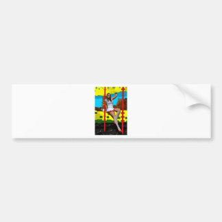 Afterschool Playground Bumper Stickers