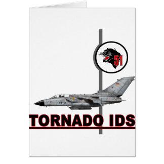 AG 51 Immelmann Tornado IDS NTM 2008 Card