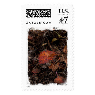 AG Autumn Growth Postage
